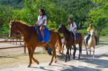 Horseback Riding from Montego Bay