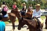 Horseback Riding from Ocho Rios