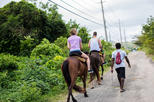 Private Horseback Riding from Ocho Rios with guide