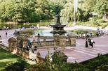 Central Park Small-Group Walking Tour