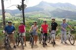 Cycle Tour from Franschhoek