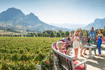Africa & Mid East - South Africa: Full-Day Private Wine Tour from Paarl