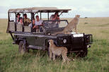 21Days Best of Kenya & Tanzania Safari, Climbing Mount Kilimanjaro & Diani Beach