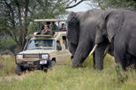 5Days Best Camping Safari in Tanzania Parks
