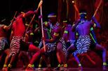 Safari Park Hotel Cat Dancers and Dinner Experience