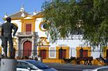 3-Hour Private Walking Tour in Seville