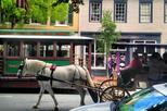 Historical Horse and Carriage Adults Only Tour of Fredricksburg Virginia