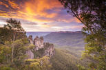 Ultimate Blue Mountains Private Day Tour Experience
