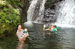 Private Waterfall and Raniforest tour