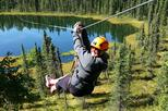 Boreal Forest Zipline adventure with breathtaking views of Denali
