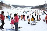 Enjoy Korean Winter at Eden Valley Resort One Day Tour