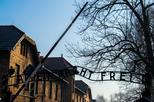 Auschwitz Birkenau and Wieliczka Salt Mine- Full Day Tour with Private Transport