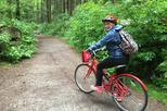 5-Hour Small-Group Vancouver Bike Tour