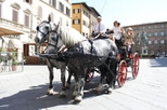 Florence Horse-Drawn Carriage Ride, Florence,