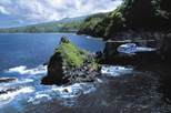 East Maui Special 45-minute Helicopter Tour