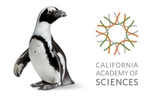 Skip the Line: California Academy of Sciences General Admission Ticket, San Francisco, Museum ...