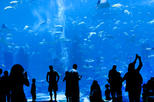Skip the Line: California Academy of Sciences General Admission Ticket, San Francisco,