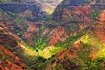 Kauai Shore Excursion: Journey to Waimea Canyon, Kauai, Ports of Call Tours