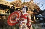 Gion Walking tour See a real Geisha