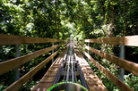 Ocho Rios Shore Excursion: Bobsledding Tour at Mystic Mountain, Ocho Rios, Ports of Call Tours