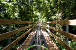 Ocho Rios Shore Excursion: Bobsledding Tour at Mystic Mountain, Ocho Rios,