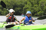 St Thomas Mangrove Lagoon Kayak and Snorkel Tour, St Thomas,