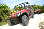 Cozumel Shore Excursion: 4x4 Rhino and Snorkel Adventure Tour, Cozumel,