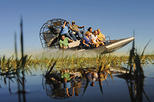 Fort Lauderdale Shore Excursion: Pre- or Post-Cruise Everglades Airboat Tour