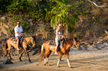 St Kitts Rainforest Horseback Riding Tour, St Kitts, Nature & Wildlife