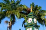 St Kitts Shore Excursion: Discover St Kitts Tour