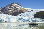 Glacier Sightseeing Cruise with Gourmet Lunch