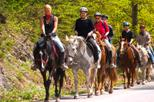 Scenic Horseback-Riding Tour from San Juan
