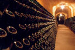 Cavas Freixenet Wine Tour from Mexico City