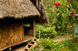 3-Day Iquitos Amazon Jungle Adventure at Ceiba Tops Luxury Lodge, Iquitos,