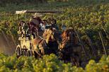 Colchagua Wine Route Tour from Santiago
