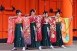 Asia - Japan: Total Kyoto - Full Day Kyoto by Day and after Dusk Small Group Tour