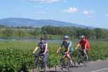 Wine Country Adventure: Bike and Kayak Wine Tour