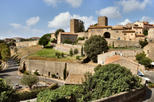 Civitavecchia Shore Excursion: Tarquinia and Tuscania Day Trip