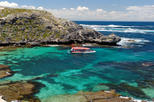 Rottnest Island Snorkeling Cruise with Optional Guided Walking Tour and Lunch