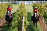 Mornington Peninsula Horseback Winery Day Trip from Melbourne, Melbourne, Day Trips