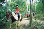 Horse Riding Tour from Cairns, Cairns & the Tropical North, Nature & Wildlife