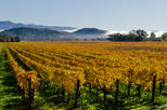 San Francisco Shore Excursion: Private Limousine Tour to Wine Country
