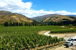 Full-Day Small-Group Guided Wine Tour in Central Otago