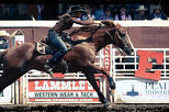The Calgary Stampede, Calgary, Sporting Events & Packages