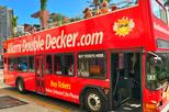 City Half Day Tour of Miami by Bus with Sightseeing Cruise
