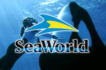 Miami to Orlando SeaWorld Theme Park Round-Trip