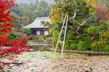 Private Scholar-led Kyoto Walking Tour: Japanese Gardens and Landscape