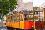 Mallorca in One Day Sightseeing Tour with Boat Ride and Vintage Train, Mallorca, Day Trips