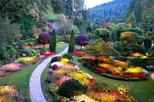 Combo Pass: Hop on-Hop Bus Tour & Butchart Gardens Shuttle & Pass (Wed-Sun Only)