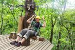 Asheville's Blue Ridge Zipline Adventure